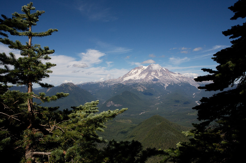 One last shot of Mt Rainier from the viewpoint just below the Lookout