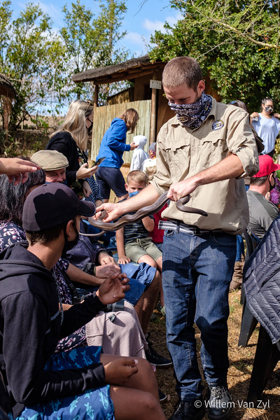 20210221 ASI Kids' Snakes Course, Butterfly World, Western Cape