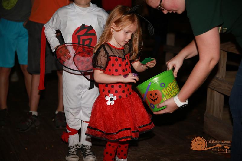 Halloween_at_Tallahassee_Museum-0120jpg.jpg