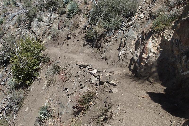 20140316030-Strawberry Peak Trailwork