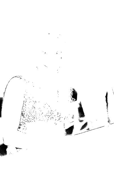DSC09027.png