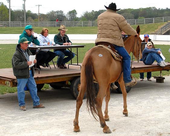 2007 Mule Auction
