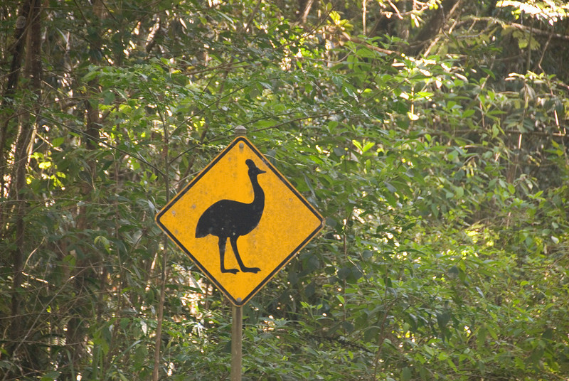 Bird Crossing Sign - Queensland, Australia