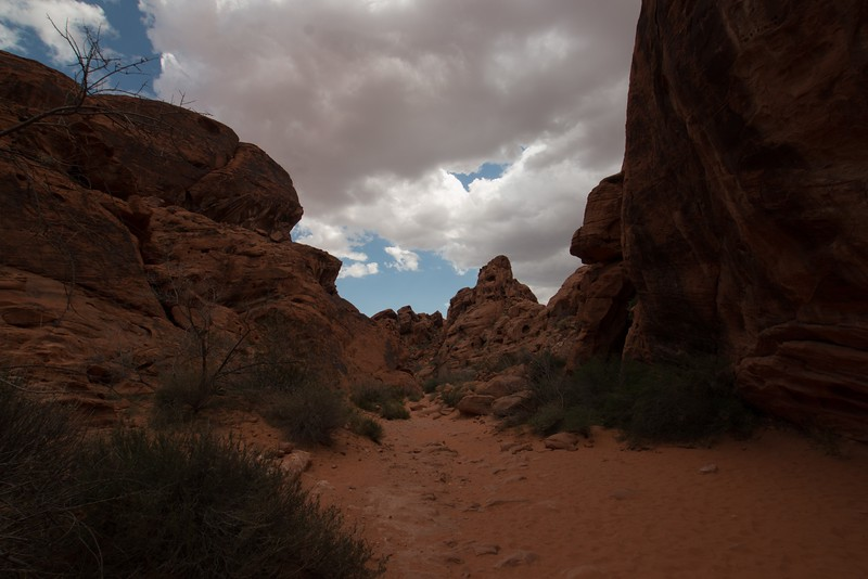 valley of fire (1 of 1)-25.jpg