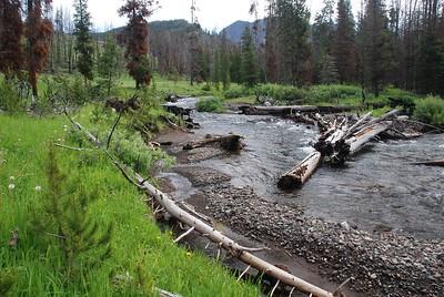 Specimen Creek July 09