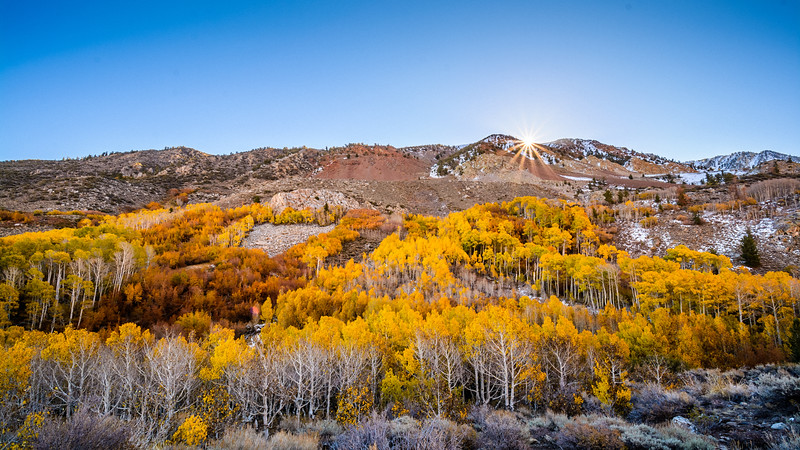 Eastern-Sierras-Bishop-Creek-Fall-Colors-01.jpg