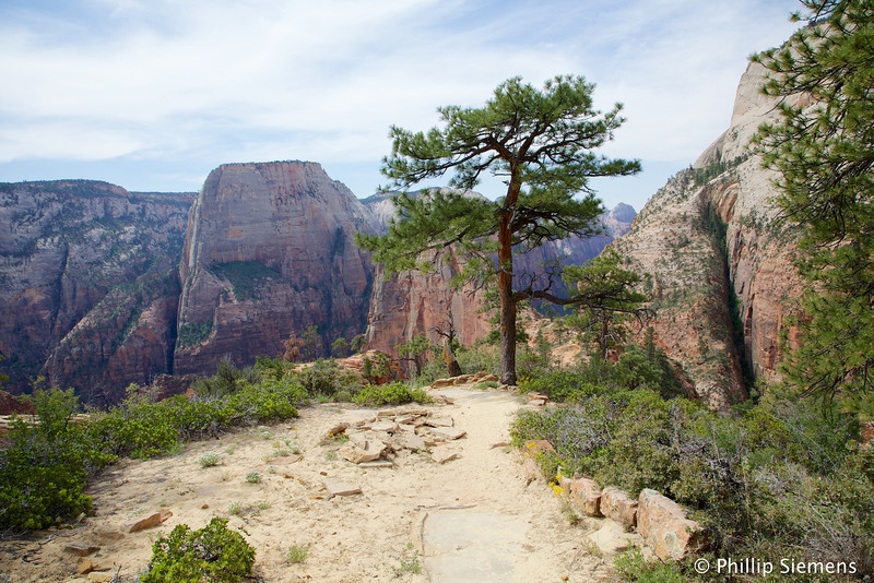On the west rim trail
