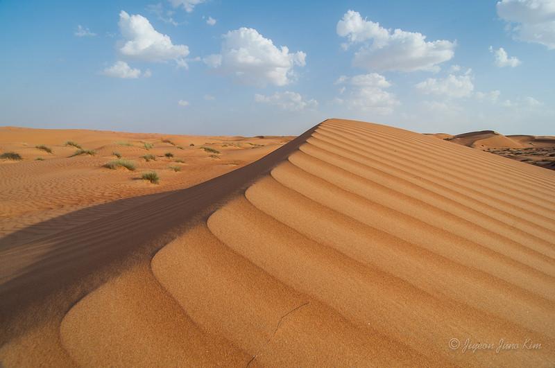 Oman-Wahiba sands-6298.jpg