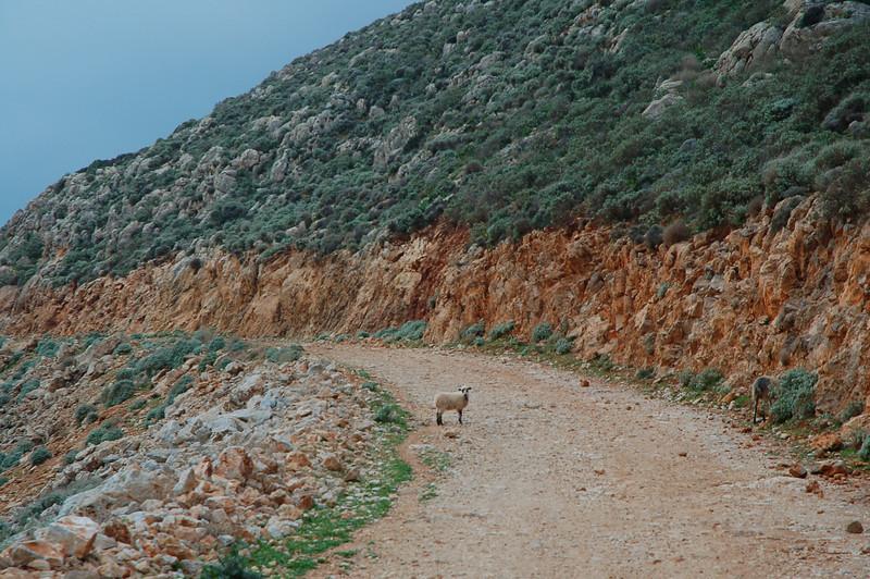 Well defined east coast path to Kastelli