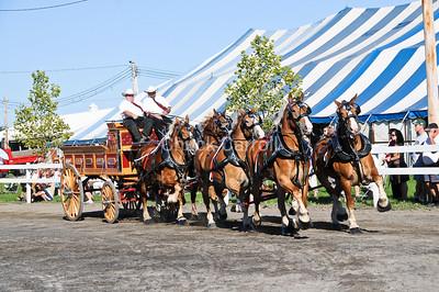 Grange Fair 2010 Friday Draft Horse Show