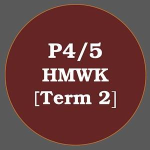 P4/5 HMWK T2