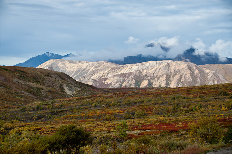 Polychrome Mountain and Pass (mountain of many colors).