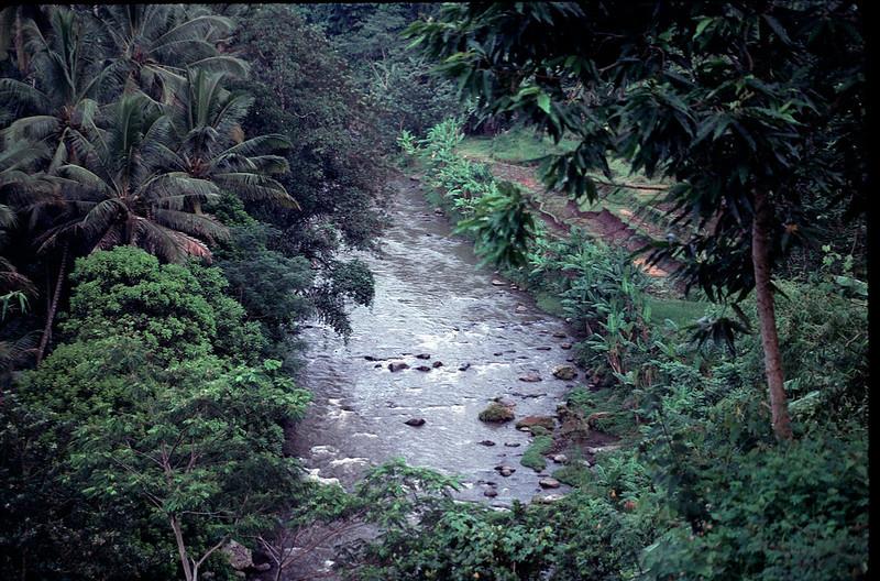 Ayung River near Ubud, Bali
