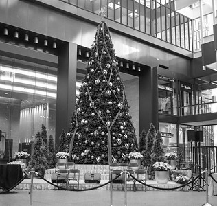Yashica R_1 Mpls Skyway 12-12-16