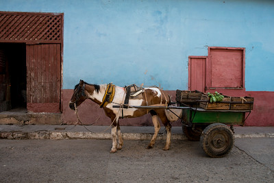 Cuba-Reunion-Galleries