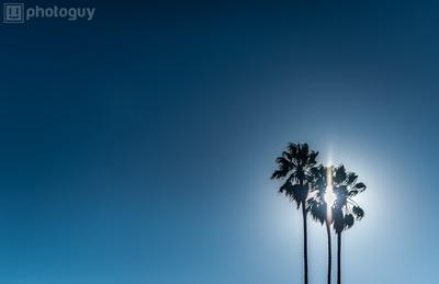 STANFORD UNIVERSITY, PALO ALTO, CA (10 of 10)-2