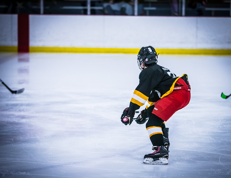 Bruins2-74.jpg