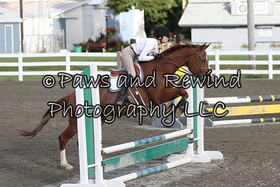 Sussex Benefit Horse Show September 14, 2013