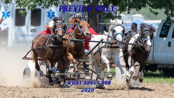 Saturday 4up ponies