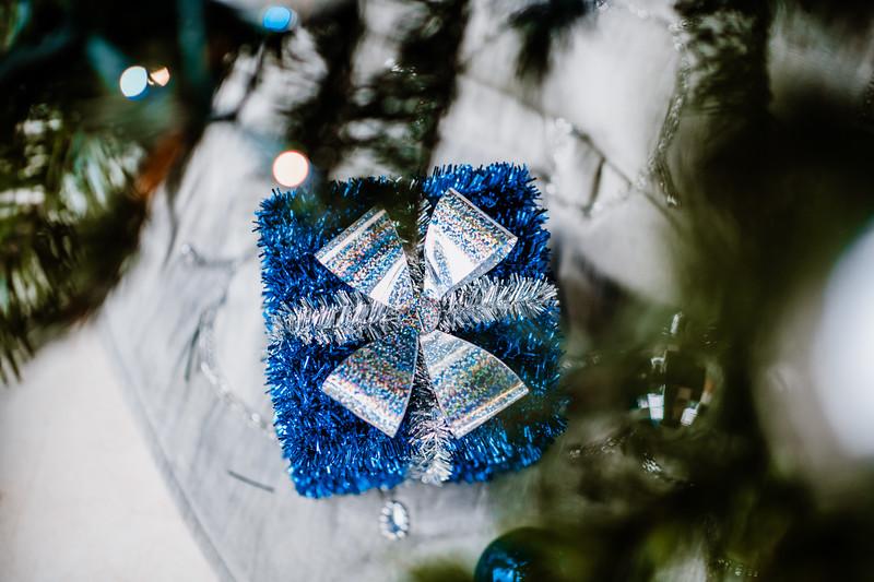 December 06, 2018 happy holidays DSC_3108.jpg