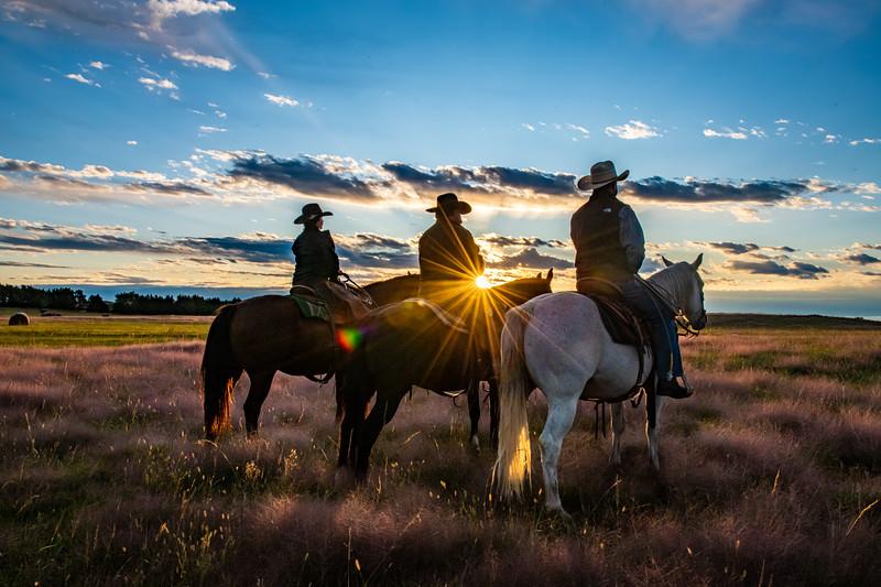 Horn Ranch--9.jpg