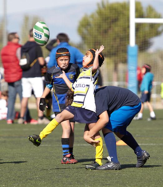 9918_12-Oct-13_TorneoPozuelo.jpg