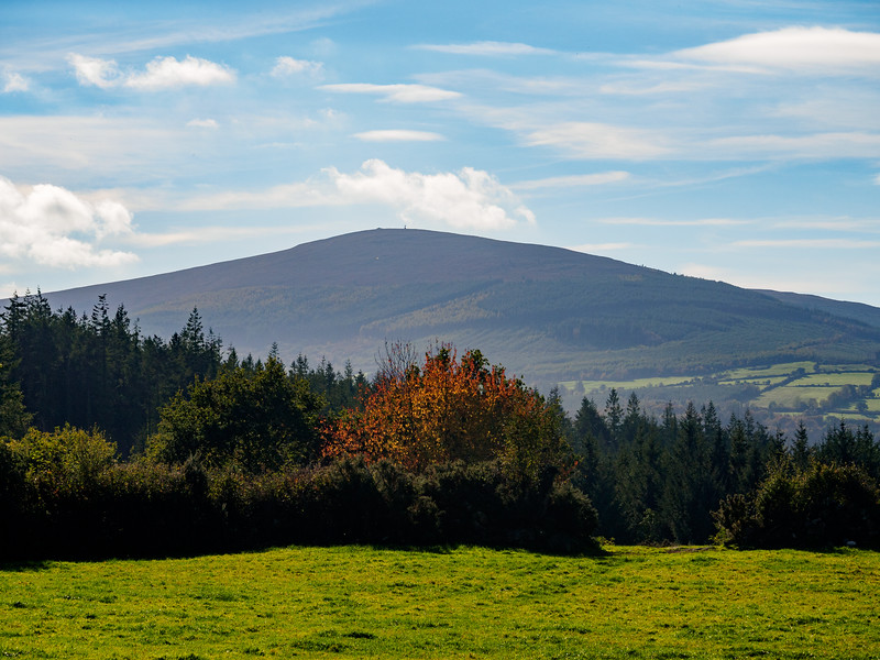Mount Leinster, from Clashganny