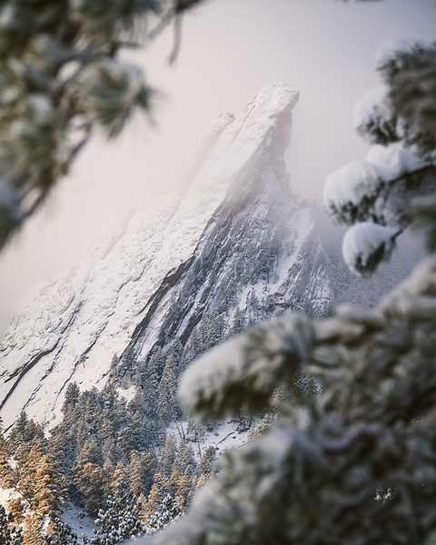 Curated Print Selections | 2021 Colorado, Utah and more