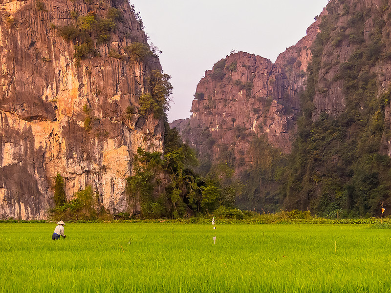 Vietnam Ninh Binh_P1090048.jpg
