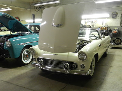 1956 Ford Thunderbird - Brett Sargent