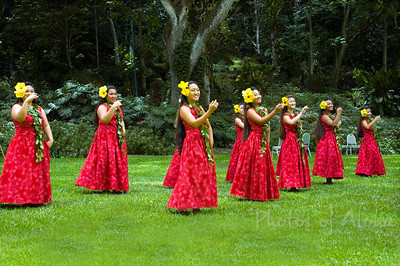 Waimea Valley Celebration 02/06