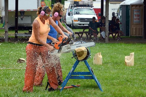 DuPage County Fair 2016