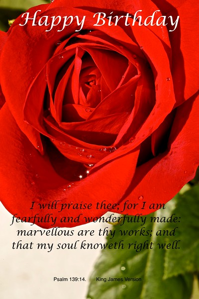 Psalm 139-14  b .jpg