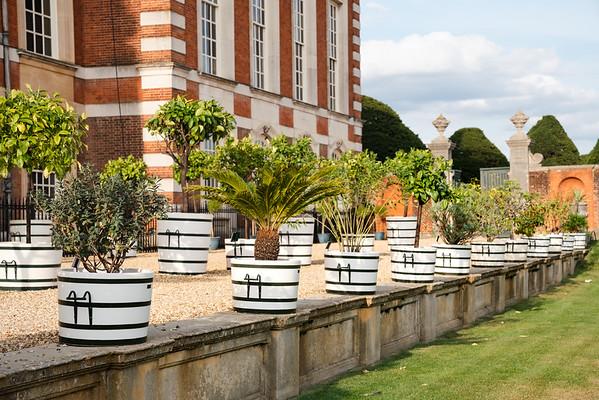 NGS Hampton Court