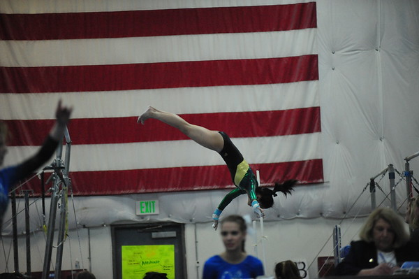 Shorecrest Gymnastics 2016-17