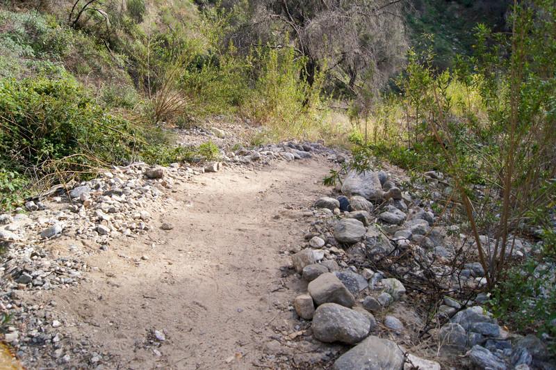 201201291688-El Prieto Trailwork.jpg