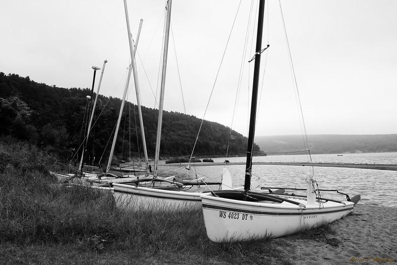 Avocet Boats