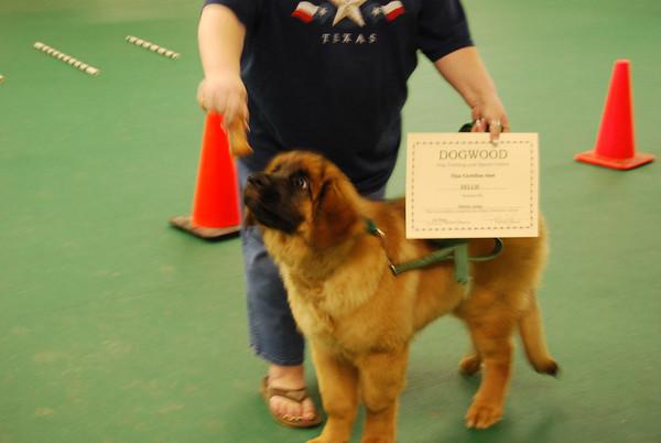 Puppy class graduation night