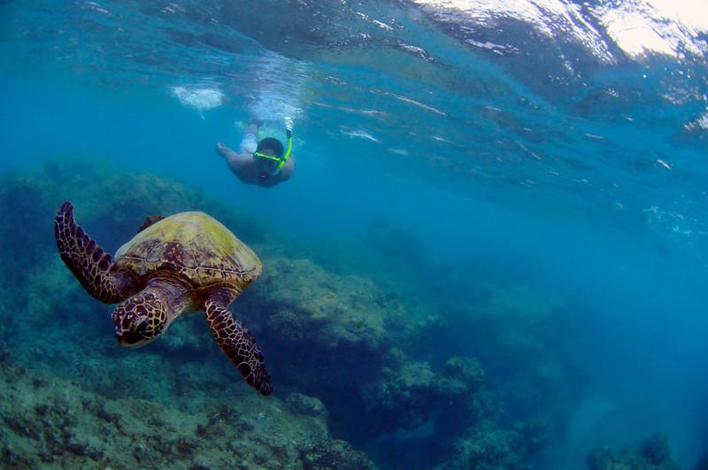 Hawaii - Hanauma Bay-28.JPG