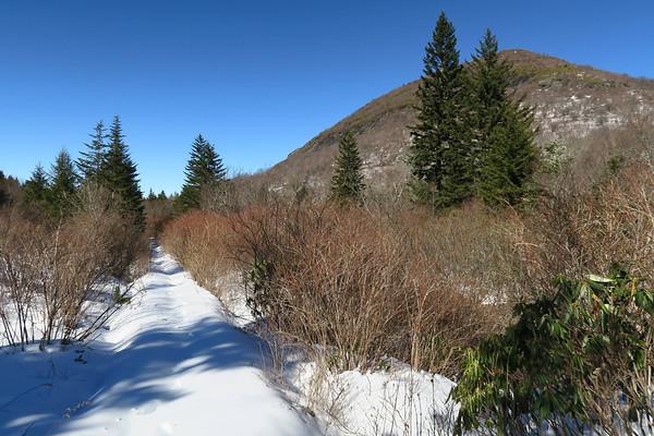 Flat Laurel Creek Trail (#346)