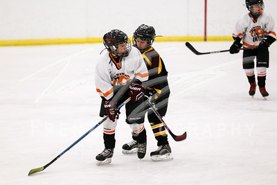 Squirt Orange vs Minot Maroon 2-18-17 530pm