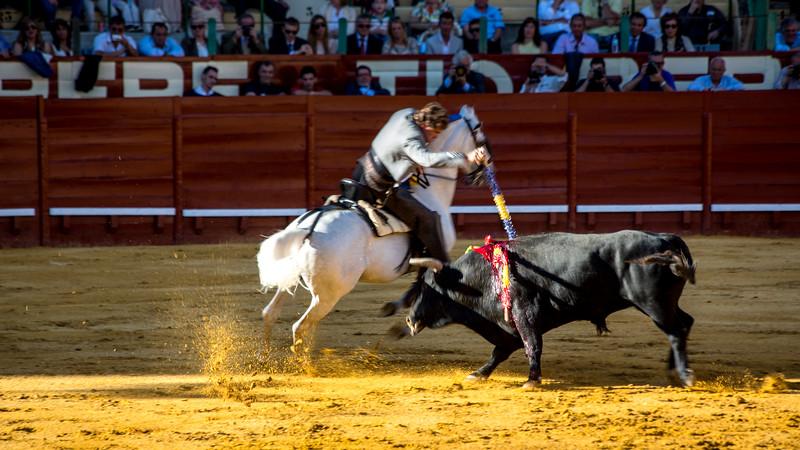 Bullfighting H13.jpg