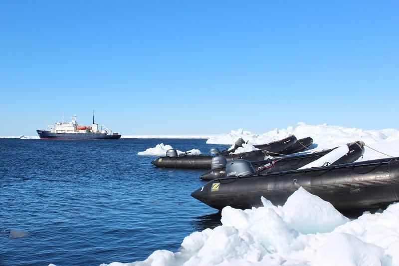Antarctica 018.JPG