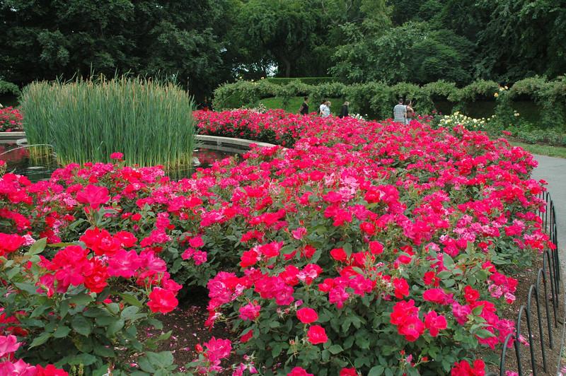 Brooklyn Botanical Gardens 073.jpg