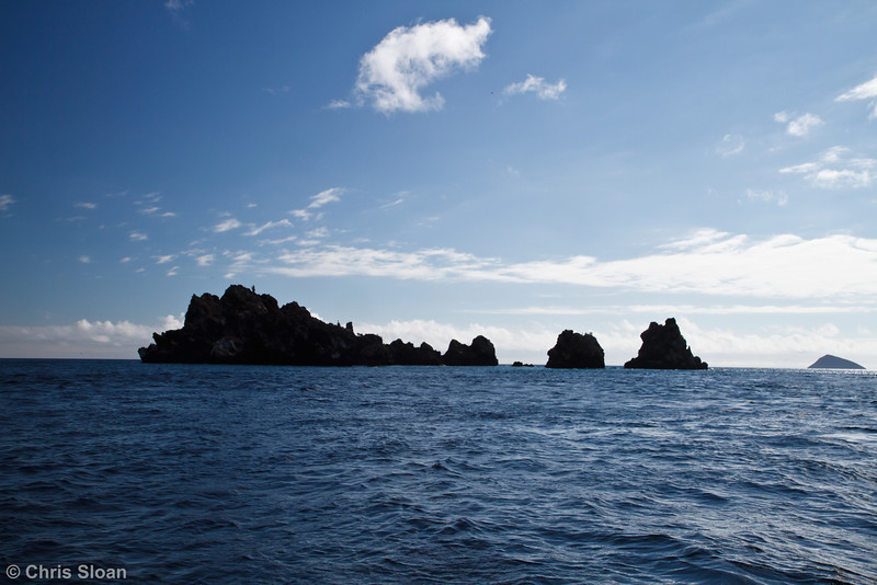 Devil's Crown, Floreana, Galapagos, Ecuador (11-22-2011) - 632.jpg
