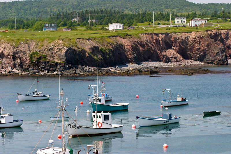 Boats in the harbour at Grates Cove, Newfoundland