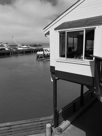 2011 Summer in San Francisco B&W
