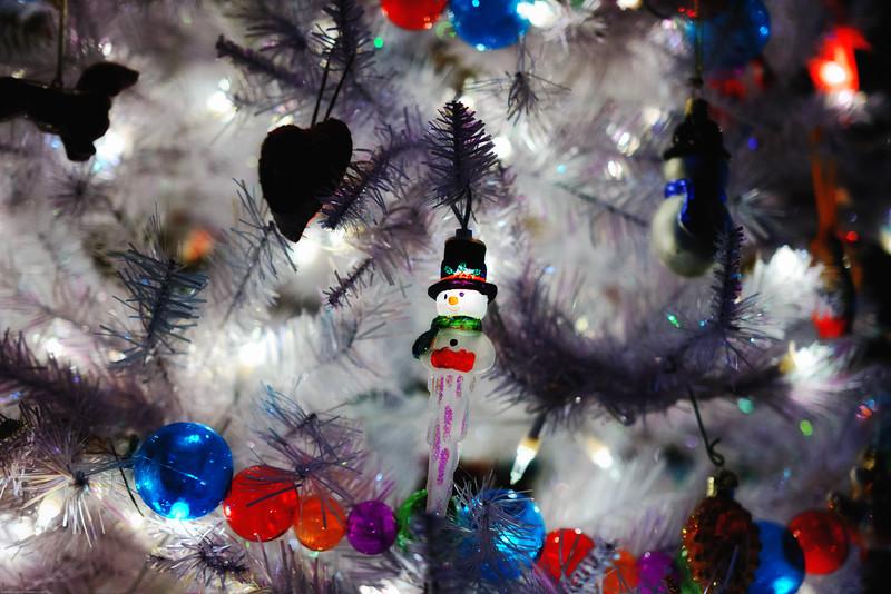 Christmas DSC_4520-Edit-1.jpg