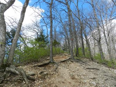 Castlewood State Park, 4-1-16