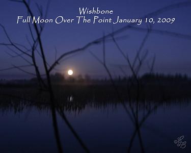 Wishbone January 10 2009